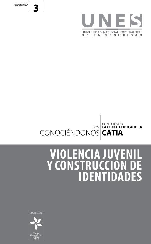 Violencia juvenil y construcción de identidades
